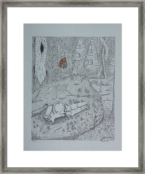 Canine Skull And Butterfly Framed Print