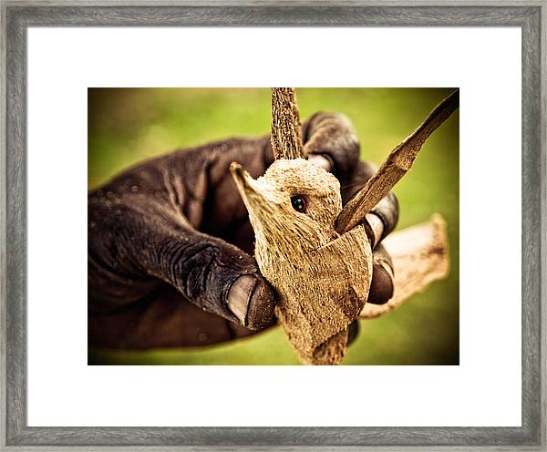 Carved Bird Framed Print