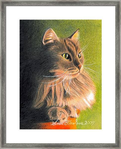Cat Miniature Framed Print