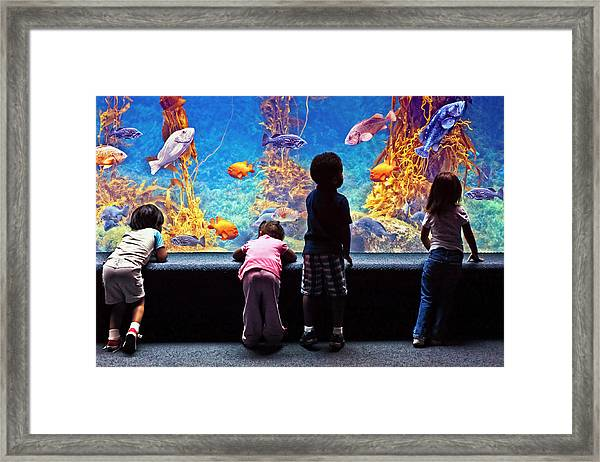 Celebrating Life Under The Sea  Framed Print by Donna Pagakis
