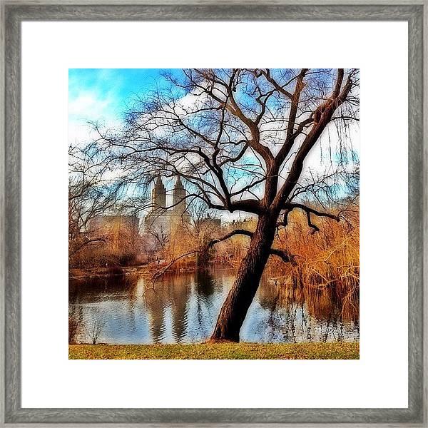 #centralpark #park #outdoor #nature #ny Framed Print