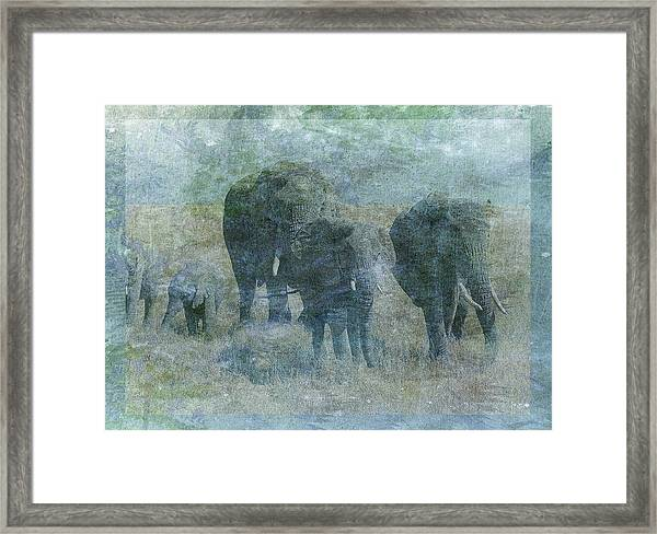 Chalk Elephants Framed Print