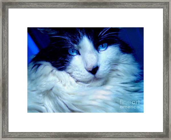 Charlie Barleycorn Framed Print