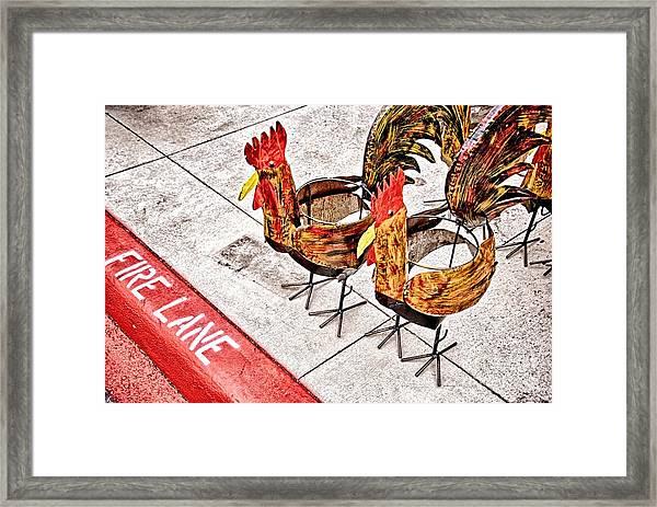 Chicken Crossing Framed Print