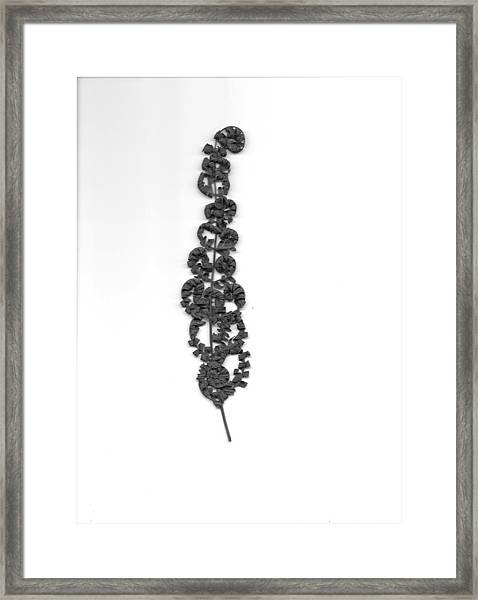 Circle Of Life Framed Print by Mary Ann Southern
