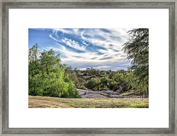 Cirrus Clouds With Trees Framed Print