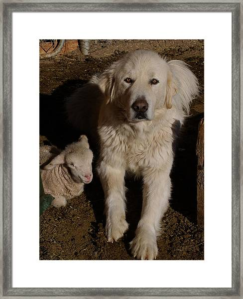 Close Personal Protection Framed Print