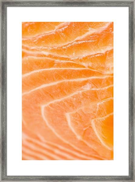 Close Up Of Salmon Meat, Studio Shot Framed Print
