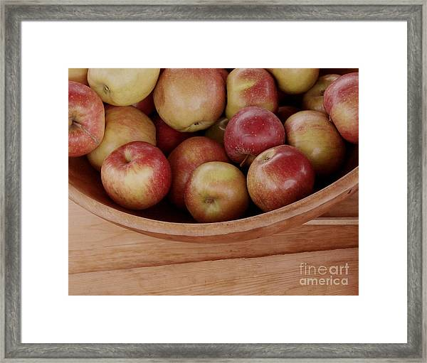 Colonial Apples Framed Print