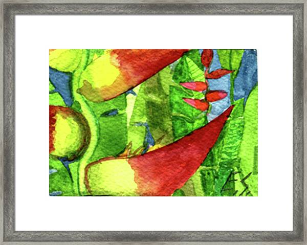 Color In The Jungle Framed Print