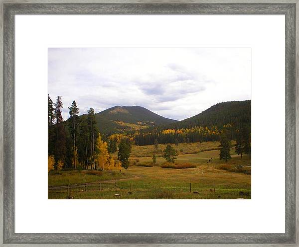 Colorado Trails In Autumn Framed Print