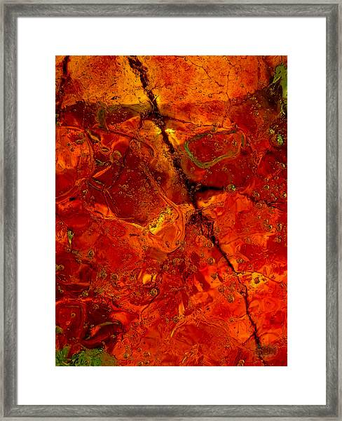 Colors Of Nature 3 Framed Print