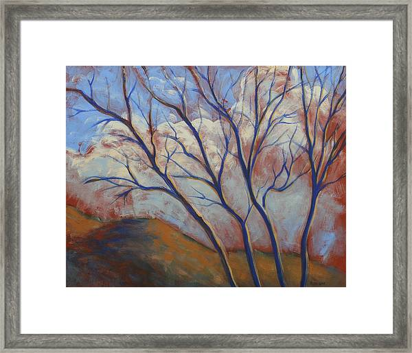 Cool Breeze On A Warm Day Framed Print