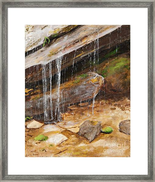 Cool Water Framed Print by Carla Dabney
