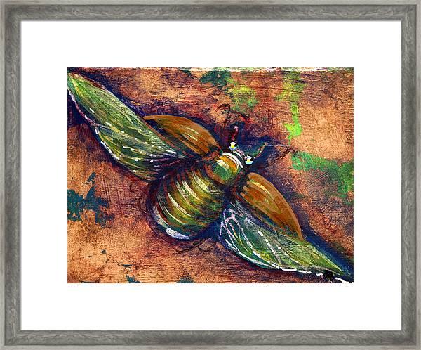 Copper Beetle Framed Print