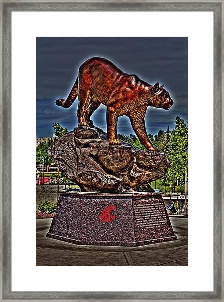 Cougar Pride Framed Print
