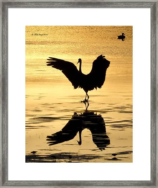 Crane Silhouette Framed Print