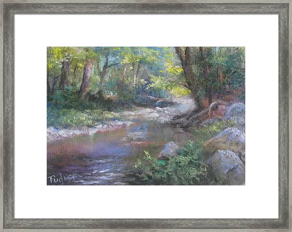 Creek Study Framed Print