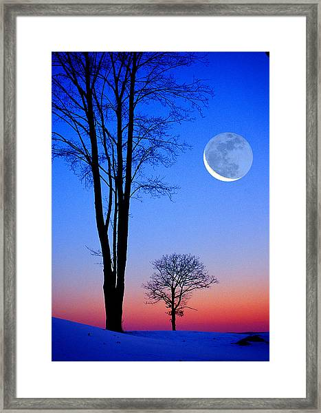 Crescent Through Trees Framed Print