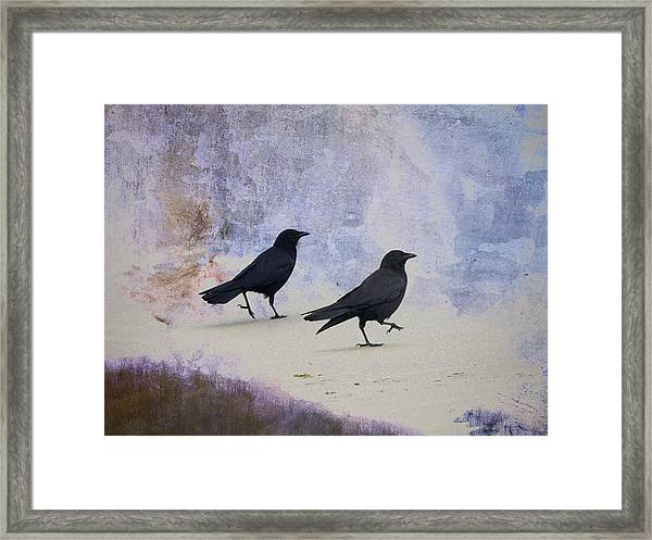 Crows Walking On The Beach Framed Print
