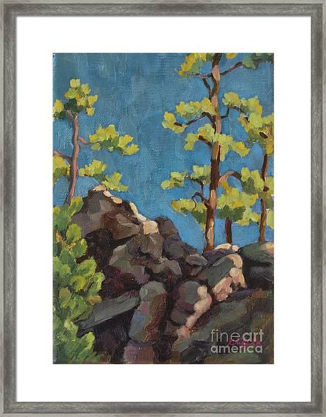 Custer Morn Framed Print