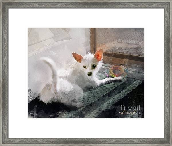 Cute Little Maggie May Framed Print
