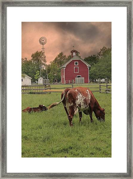 Dairy Farm Framed Print