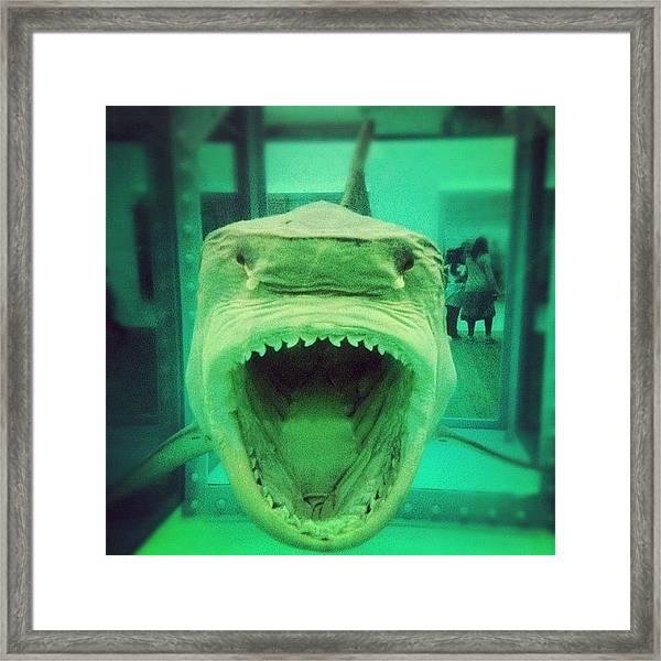 Damien Hirst Jaws Framed Print