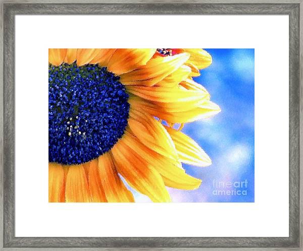 Delight Framed Print