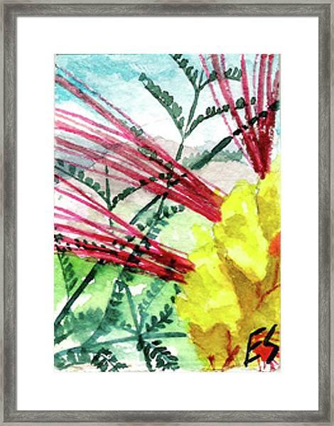 Desert Bird Of Paradise Framed Print