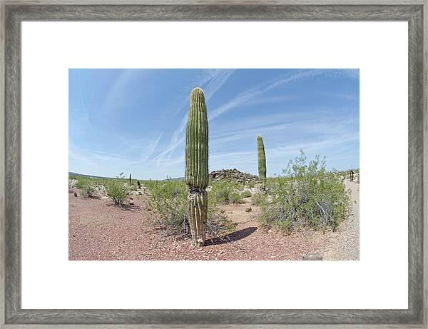 Desert Monument Framed Print