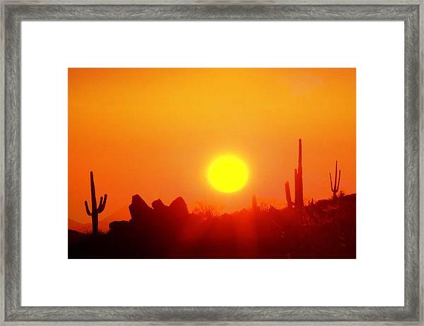 Desert Sun Framed Print by Robert Wiley