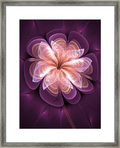 Diamond Dahlia Framed Print