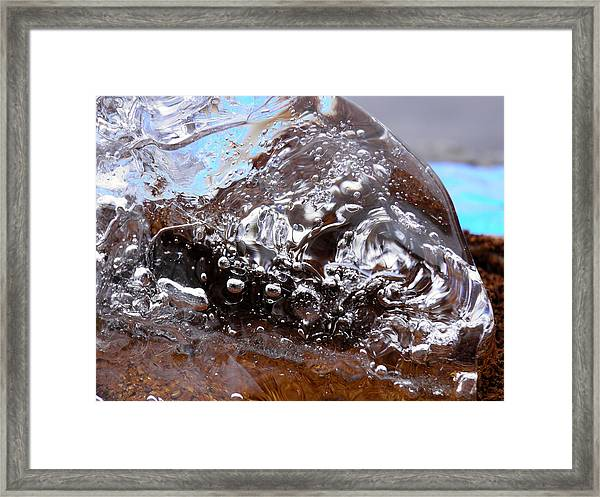 Disguised Framed Print
