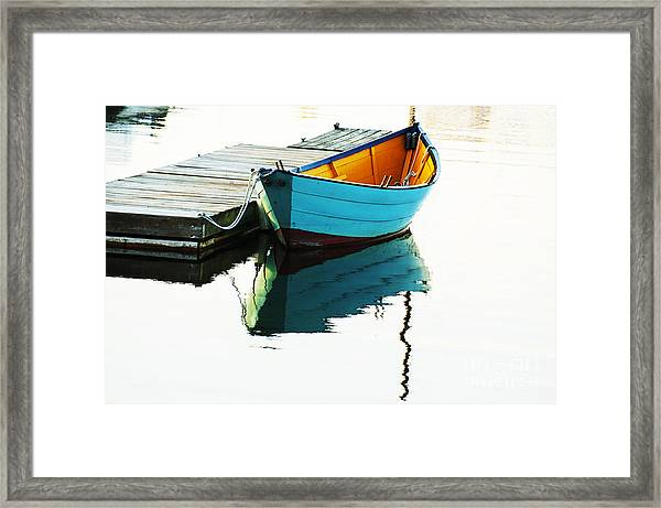 Dory At Rest Framed Print