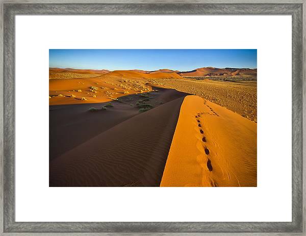 Down Dune Framed Print
