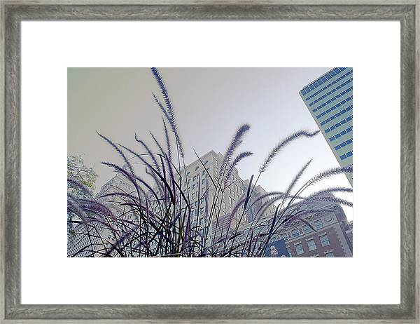 Dreamy City Framed Print