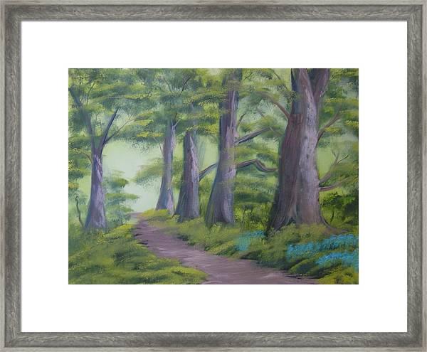 Duff House Path Framed Print