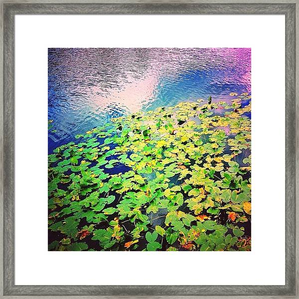 Dwell In Possibilities Framed Print