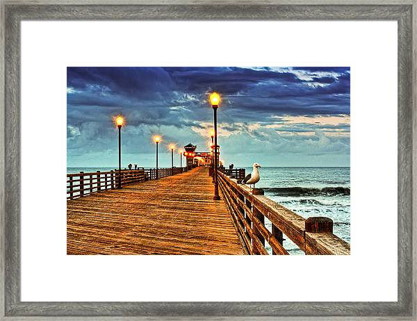 Early Bird Framed Print by Donna Pagakis