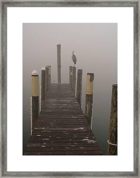 Early Morning On The Dock Framed Print