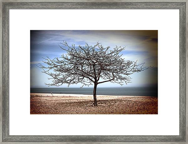 Early Spring Framed Print