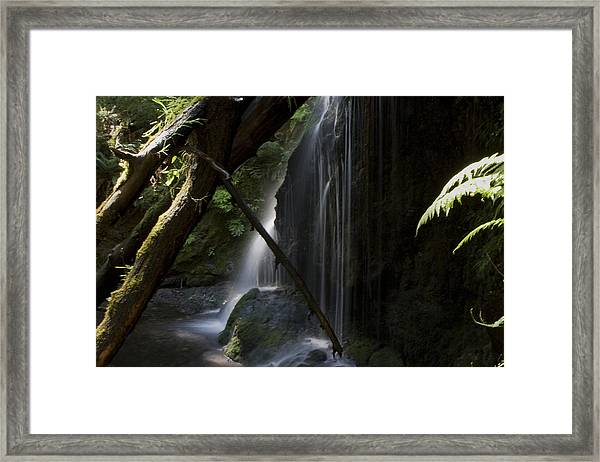 Framed Print featuring the photograph Eden On Orcas by Lorraine Devon Wilke