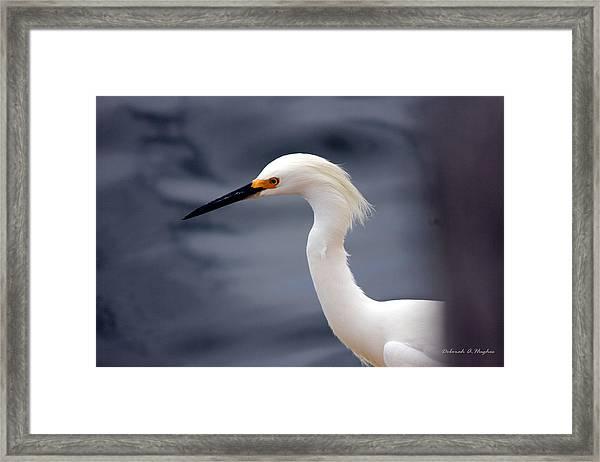 Egret Soft Framed Print