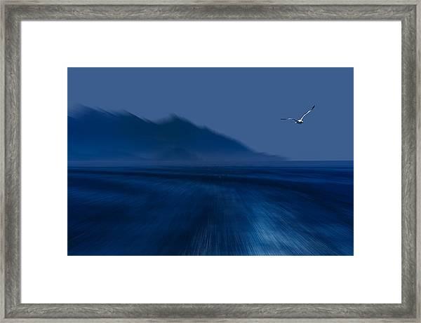 Elba Island - Flying Away - Ph Enrico Pelos Framed Print