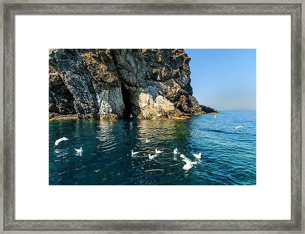 Elba Island - Seagulls Coast 3 - - Costa Dei Gabbiani 3 - Ph Enrico Pelos Framed Print