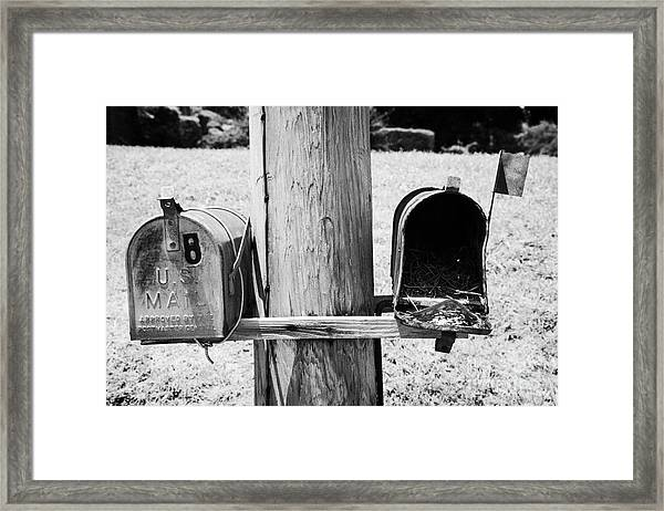 empty old used american private mailboxes one with birdsnest in Lynchburg tennessee usa Framed Print by Joe Fox