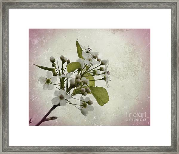 Etched In Love Framed Print