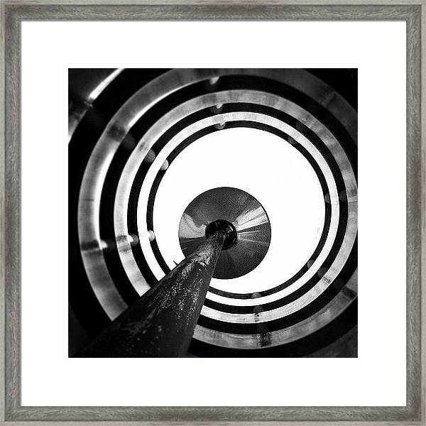 Eye Balling - Concrete Jungle Framed Print
