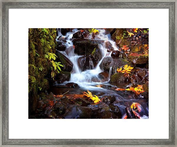 Fall At Wahkeena Framed Print